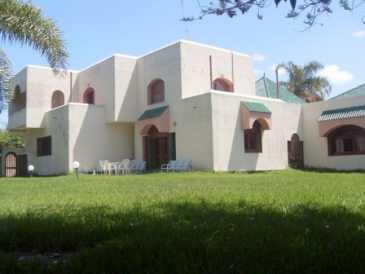 Leggere un annuncio proposta di vendita casa 2 600 mq for Proposta di acquisto casa