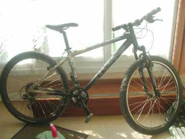 Cercare Annunci Biciclette T Max Pagina 24